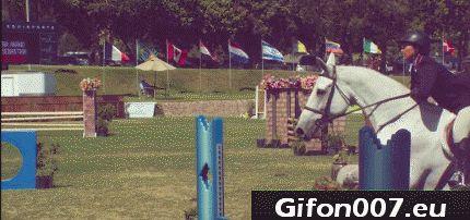 horse, slow motion, jump, hurdling 1
