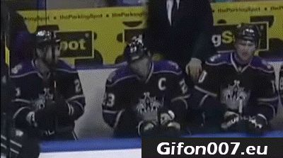 ice hockey drink bottle, gifs, water, funny