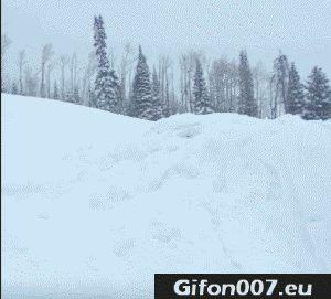 Skiing, Fail, Jump, Gifs, Gif