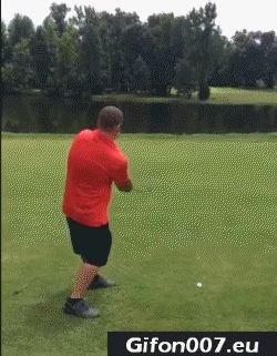 golf-sport-gif-fail-funny