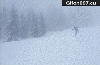 winter-ski-snow-fails-gif-video