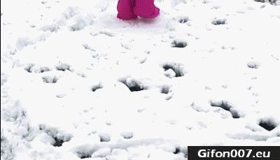 baby-falling-face-into-snow-gif-video