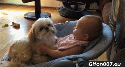 Cute Baby with Dog, Videos, Youtube, Gif