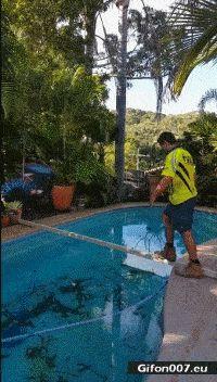 Funny Video, Fail, Fall into Swimming Pool, Gif