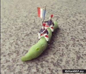 Funny Video, Caterpillar, Gif