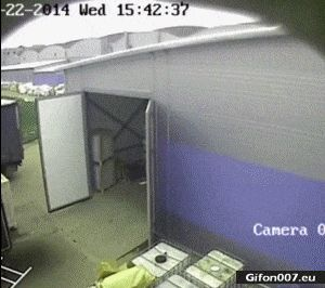 Funny Fail, Palette, Warehouse, Video, Gif