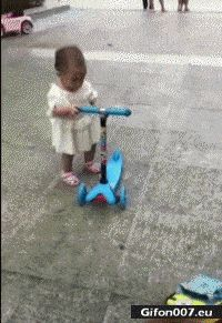 Funny Video, Dog, Child, Scooter, Gif