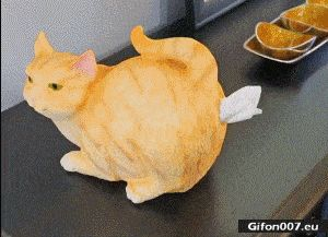 Funny Video, Artificial Cat, Handkerchiefs, Gif